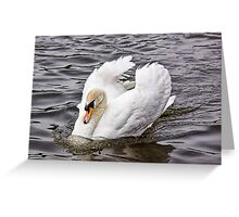 Gliding  Greeting Card