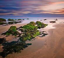Tidal Moods by Mark Robson