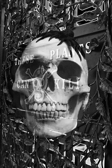 The Poison Garden  by Nigel Bangert