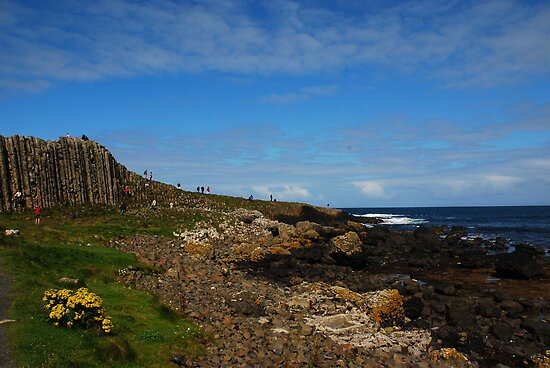 Giants Causeway by julie08