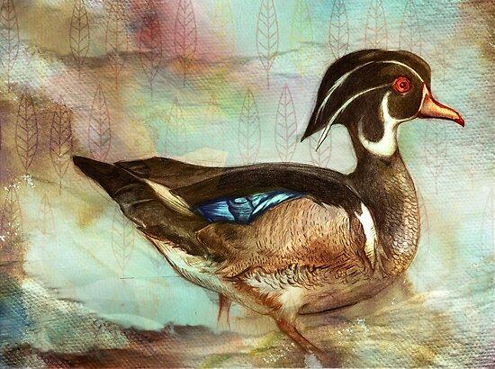 Wood Duck by roxygen