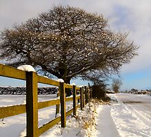 Winters Day by Lee Elvin
