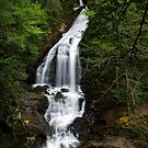 Moss Glen Falls, Stowe - An Overview by Stephen Beattie