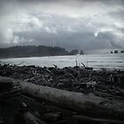Stormfront on First Beach, La Push, WA by Jennifer Bishop