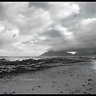 Walking on the beach - Kommetjie, near Cape Point by galemc