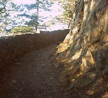 Path Less Traveled by Jennifer Bishop