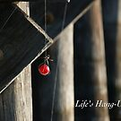 Life's Hang Ups by JpPhotos