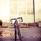 On your bike! by Sharonroseart