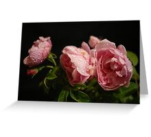 Crying With Roses...... Greeting Card