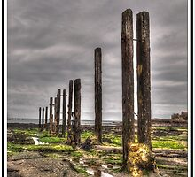 Timber Groynes (HDR using Photomatix) by Phil-Edwards