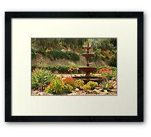 Cactus Fountain Framed Print