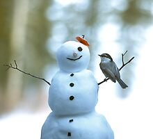 Bird and Snowman by Chris Whitney