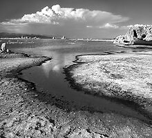 Mono Lake and Cloud by Chris Whitney