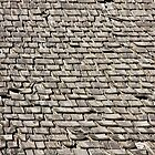 Weathered Shingles by Julia Washburn