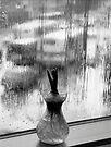 rainy window by Marianna Tankelevich