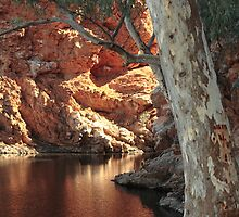Ellery Creek Big Hole by philip73