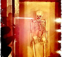 Skeletal by Kerryn Benbow