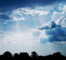 Blue - ray by newfan