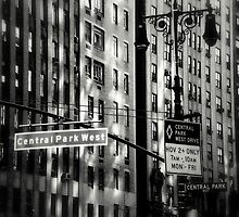 Central Park West by Mojca Savicki