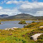 Connemara by Stefan Schnebelt