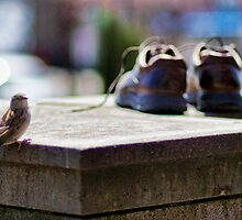 Bird and Boots by BillCMartin