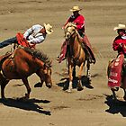 One Graceful Dismount Comin&#x27; Up! Montana Rodeo Photo by Donna Ridgway
