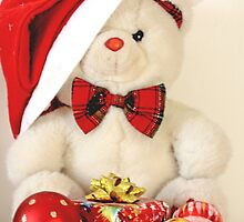 Mr Teddy Bear has a present by pogomcl