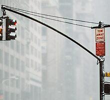 59th Street & 5th Avenue by Lar Matre
