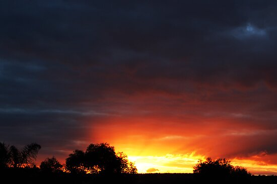 A Frankland River Sunset by Eve Parry