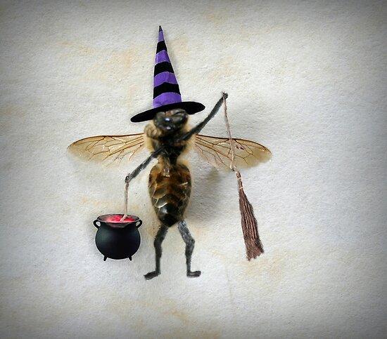 Bewitch by Susan Littlefield