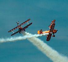 Wing Walkers by sandmartin