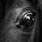 eye 03 by Watzmann71
