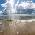 Morning Beach Walk by Charlie