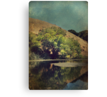 Solace Canvas Print