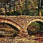 'Clapper Bridge'  by Catherine Hamilton-Veal  ©