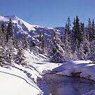 Winter Hideway by Graeme Wallace