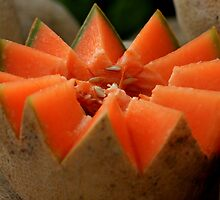Fresh cantaloupe by jstoeber