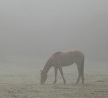 Lost In The Mist by RebeccaBlackman
