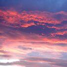 Red Sky In The Morning.......... by Sandra Cockayne
