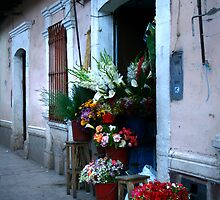 Arequipa, Peru 2143 by Mart Delvalle