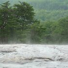 bald rock in the rain by cortypants
