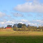 Migrating Geese by Randall Ingalls