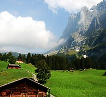 Cottages below Scheidegg, Berner Oberland, Switzerland by Michael Brewer