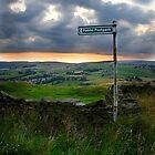 Public Footpath Sign by Gavin Sawyer