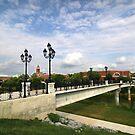 Chief John Ross Memorial Bridge by Patricia Montgomery