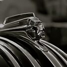 The Chief... Pontiac by kelleygirl