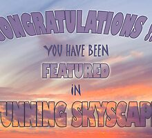Banner for Stunning Skyscapes by pennyswork