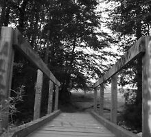 bridge to bald rock by cortypants