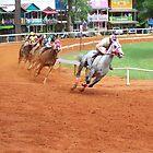 Quarter Horse Racing at the Neshoba County Fair  by cuttincwgrl