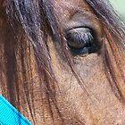 Looking Into His Eyes by cuttincwgrl